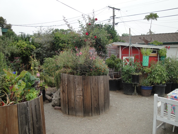 j&Js burbank garden
