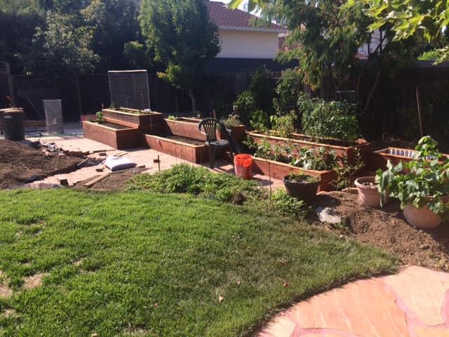 gardenbed1-2017