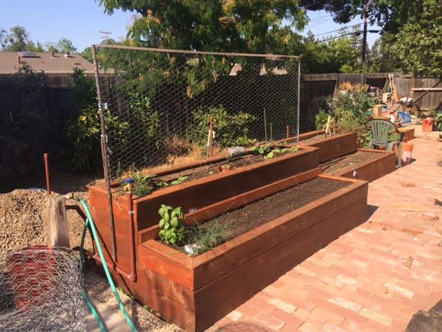 gardenbed2-2017